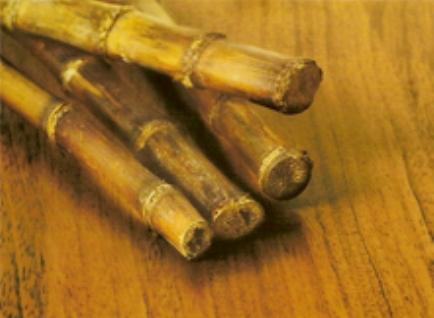 Что за зверь бамбуковый паркет + обзор технологии его укладки