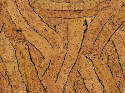 Пробка - натуральный материал из Португалии
