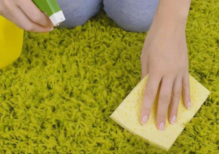 Как почистить ковролин в домашних условиях быстро и эффективно 21