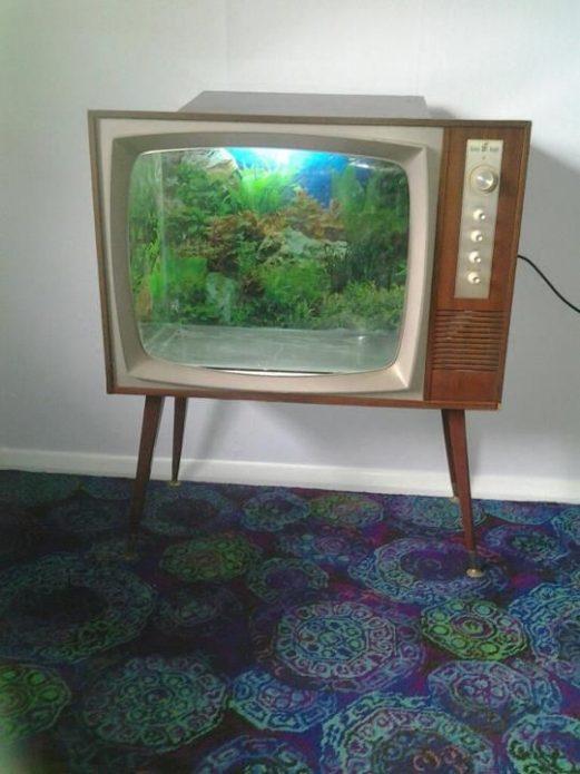 Аквариум в корпусе телевизора