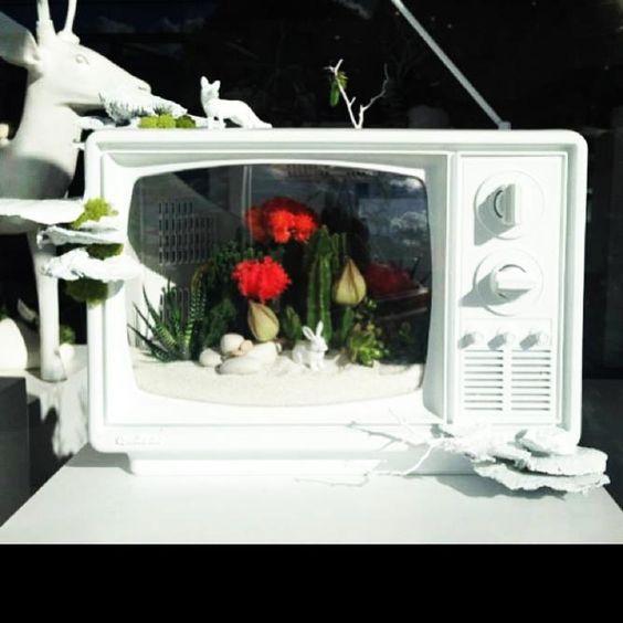 Цветы в корпусе старого телевизора
