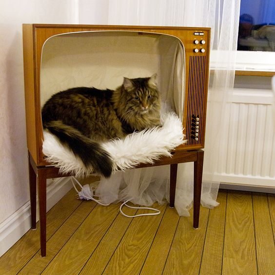 Домик для кота из старого телевизора