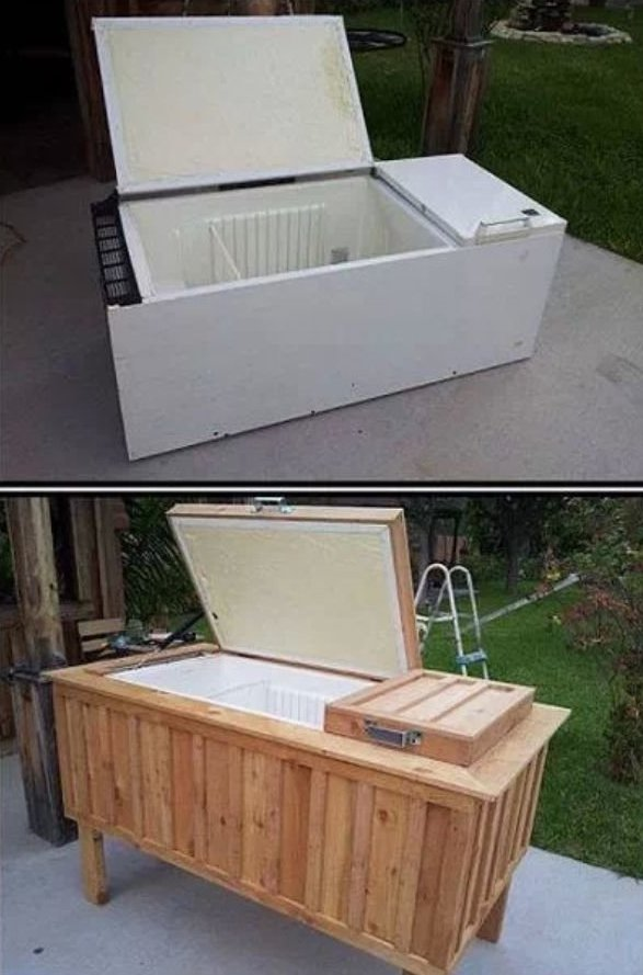 что можно сделать из старого холодильника фото низкорослые бархатцы вдвойне