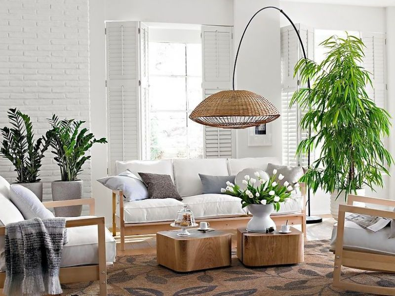 Как лучше расставить комнатные цветы в квартире: идеи с фото