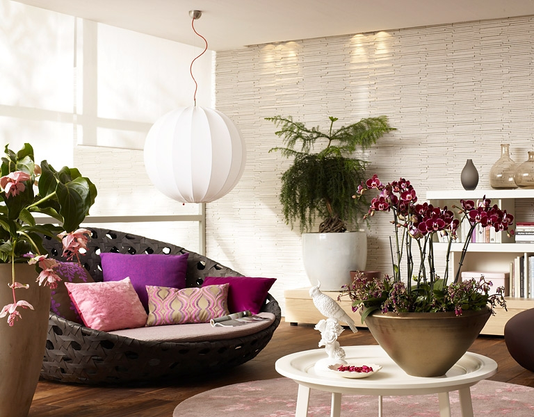 Комнатные цветы в квартире в картинках