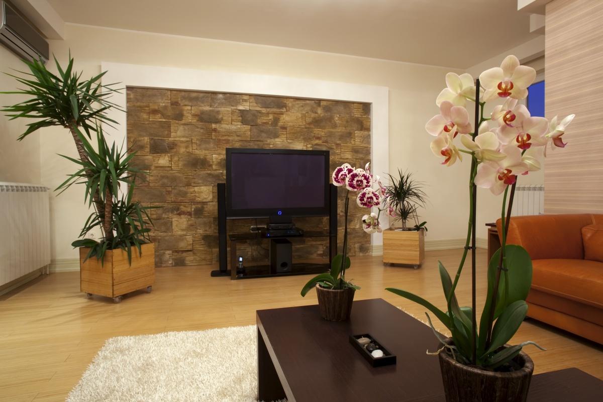 Реальные фото квартир с цветами