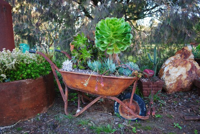 Садовая тачка на колоритной клумбе