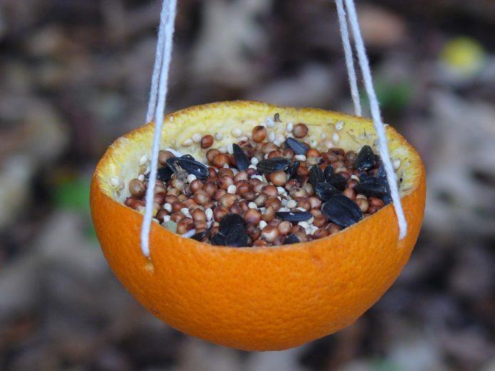 Съедобная кормушка из апельсиновой корки