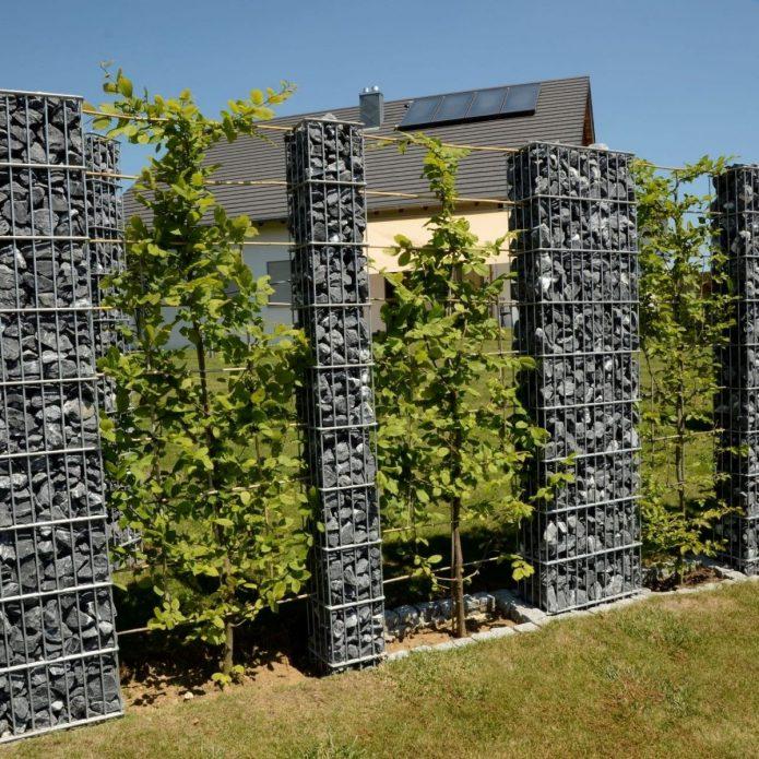 Эффектная растительно-каменная перегородка на дачном участке