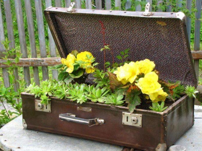 Контейнерная клумба на даче из старого чемодана