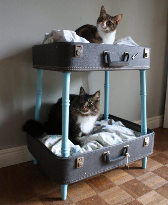 Спальные места из чемоданов для двух кошек