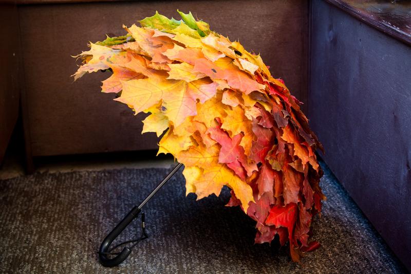 Поделки из осенних листьев: природная красота в квартире и на даче