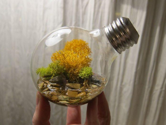 Мини-аквариум из лампочки